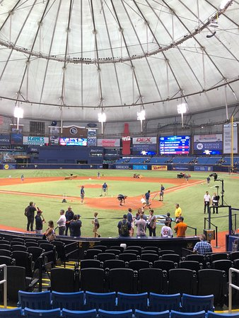 Tropicana Field Photo