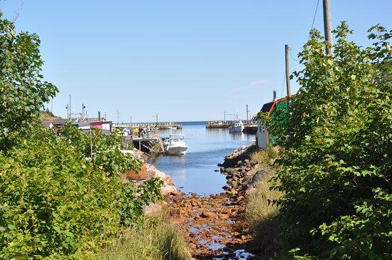 Ảnh về Petty Harbour