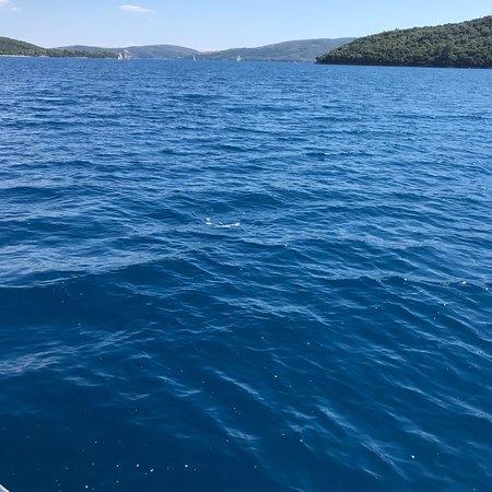 Lefkada Fishing Cruises : photo1.jpg