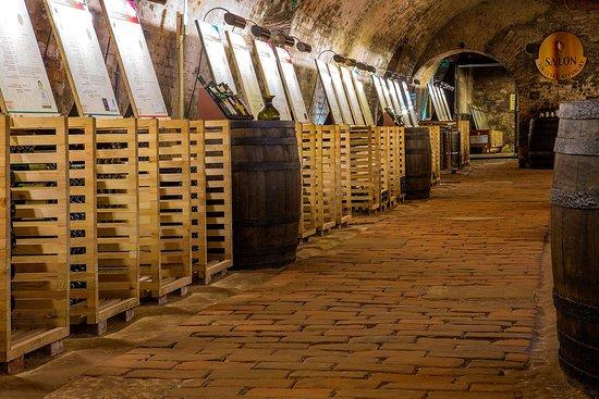 National Wine Salon (Národní salon vín): Salon vín ČR - Zámek Valtice - prezentační sklep