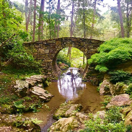 Garvan Woodland Gardens 사진