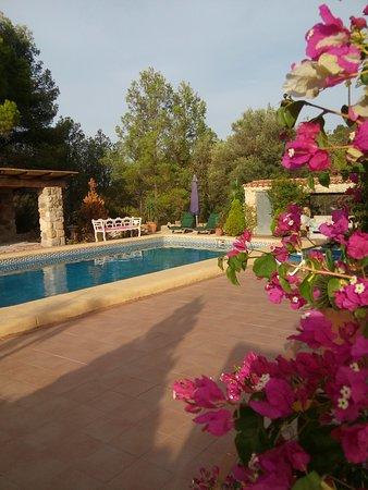 Benigembla, Spain: tuin met zwembad