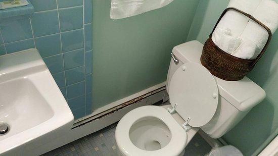Fair Haven, MI: Rust on bathroom heater