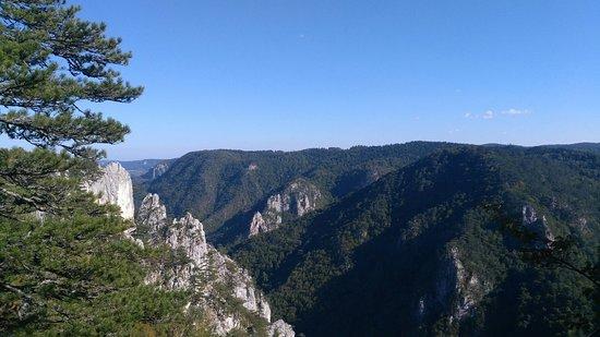 Tara National Park, Serbia: Видиковац Соколарица на Тари.