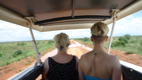 Tsavo National Park East, Quênia: The game drive