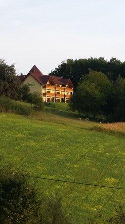 Jennersdorf, Áustria: Hotel Oasis