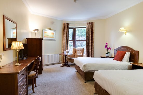 Oranmore Lodge Hotel : Guest room