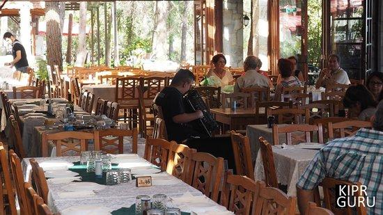 Maria's Tavern: типичная для традиционных деревенских таверен обстановка