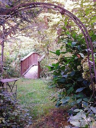Rabun Gap, GA: Enter a magical land of waterfall, butterflies, and hummingbirds.