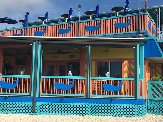 Restaurant Picture Of The Whale Fort Myers Beach Tripadvisor