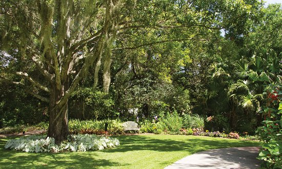 Main Lawn - Picture of Heathcote Botanical Gardens, Fort Pierce ...