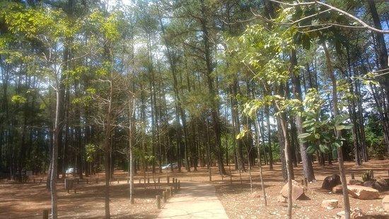 Jardim Botânico de Brasília: IMG_20180913_134355918_large.jpg