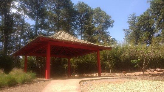 Jardim Botânico de Brasília: IMG_20180913_133014831_large.jpg