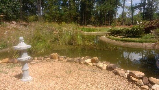 Jardim Botânico de Brasília: IMG_20180913_133125689_large.jpg