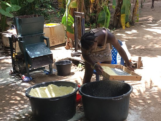 Saint-Laurent-du-Maroni, Guyana Francese: Manioc preparation. One of the stops on the tour of the Maroni River is a traditional village.
