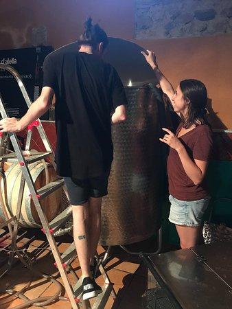 Alta Alella: Seeing the fermentation process
