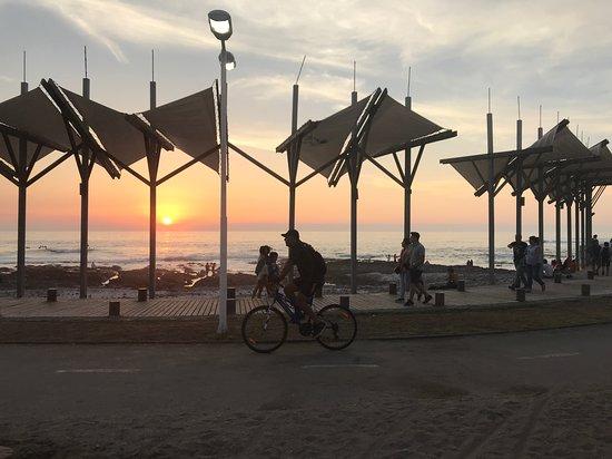Rental Bike Iquique