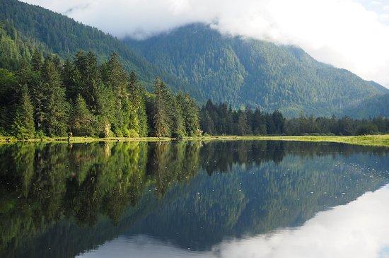 Great Bear Lodge: OI000494_large.jpg