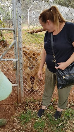 Nairobi Animal Orphanage: 20180830_141811_large.jpg