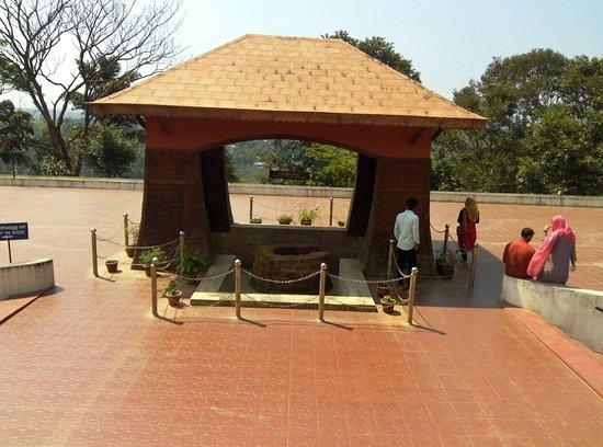 Wayanad District, India: IMG_20180914_141450_large.jpg