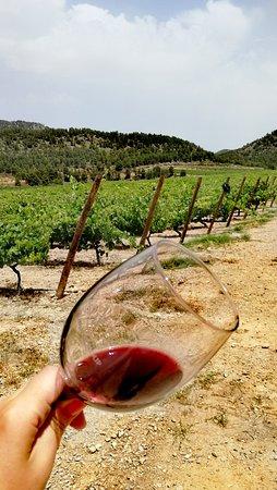 Região de Múrcia, Espanha: Enjoy Lavia between vineyards