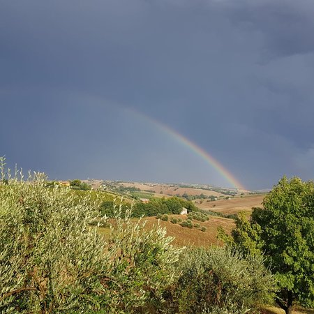 Morro d'Alba, Italia: photo1.jpg