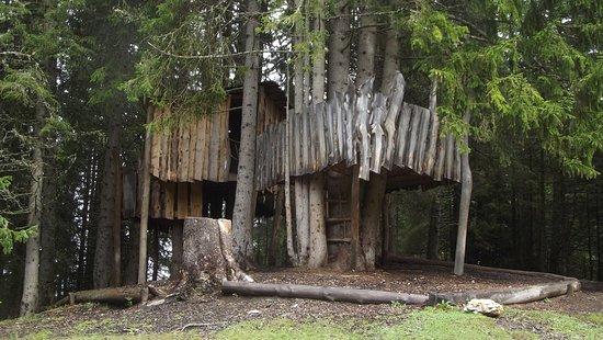 La casa sull albero black cabin picture gallery