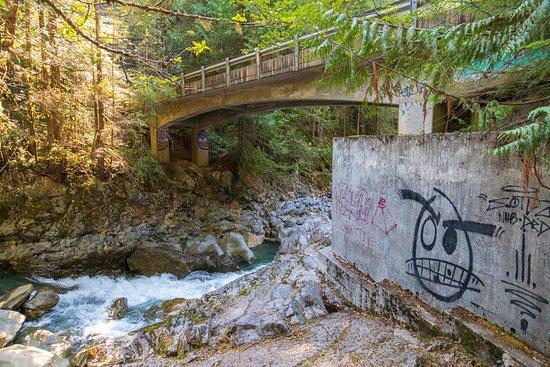 Nooksack Falls: Just behind the falls under the bridge