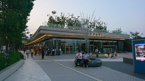 Futako Tamagawa Rise