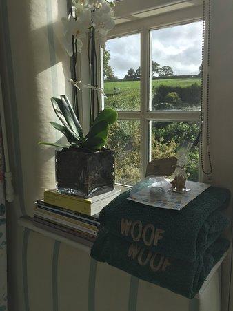 Evershot, UK: Dogs welcome