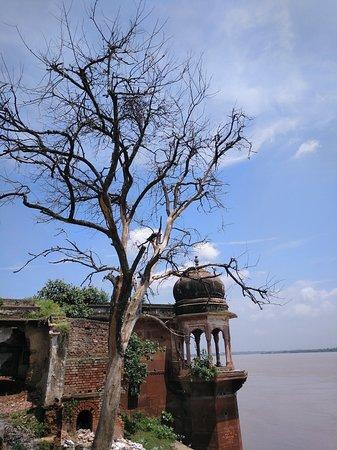 Varanasi District, الهند: IMG_20180910_112454_562_large.jpg