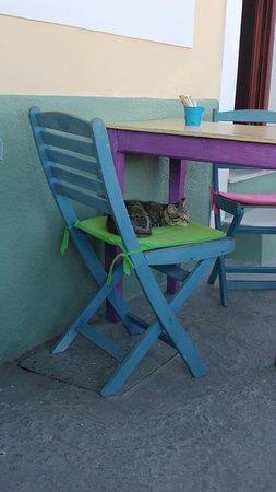 Bilde fra The Olive Tree Cafe