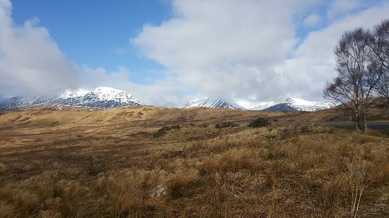 Bridge of Orchy, UK: Loch Tulla View Point