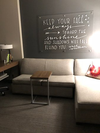 Pleasant Sofa Bed Picture Of La Quinta Inn Suites By Wyndham Download Free Architecture Designs Ponolprimenicaraguapropertycom