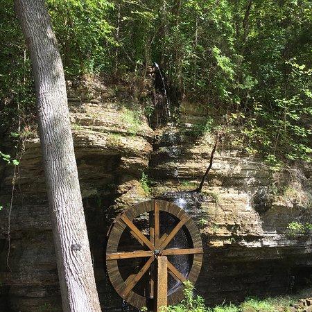Waynesboro, TN: photo4.jpg
