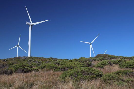 ‪Cape Bridgewater Wind Farm‬
