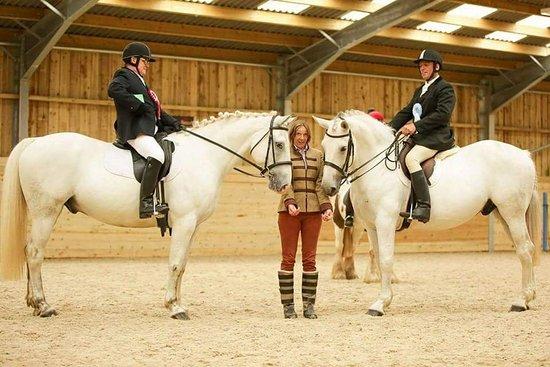 Ivybridge, UK: Fitzworthy Equestrian Centre