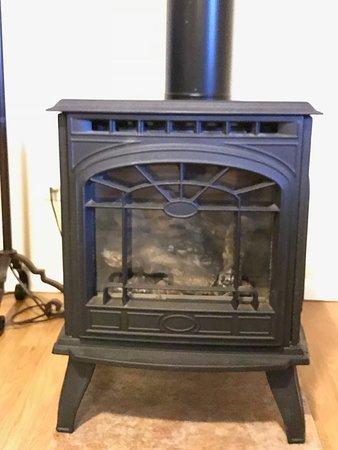 Quillayute River Resort: gas wood stove