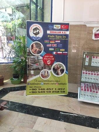 Kangal, Turkije: Spa Merkez