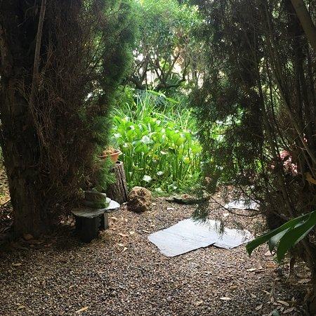 Jardin botanico la almunya del sur el ejido 2019 all for Jardin botanico el ejido