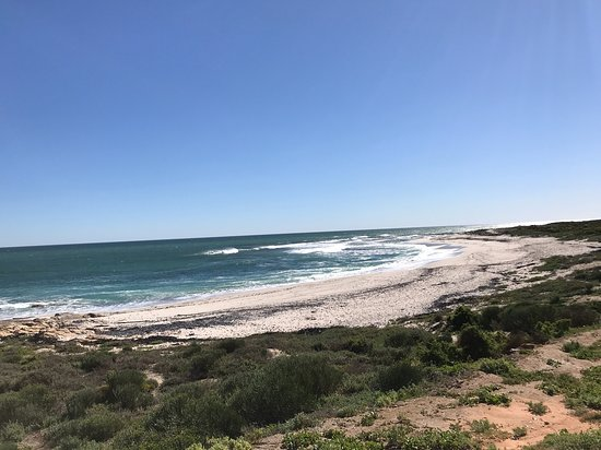 Lamberts Bay, South Africa: spectacular view
