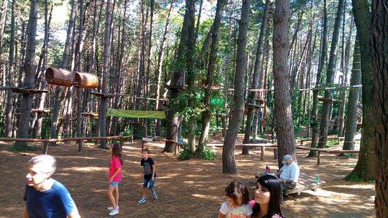 Parco Avventura Montevergine: P_20180908_110328_large.jpg