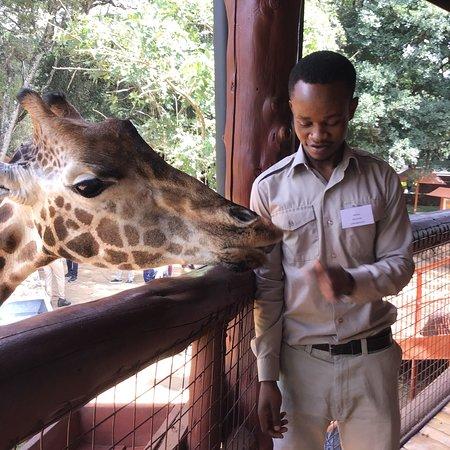 Giraffe Centre: photo4.jpg