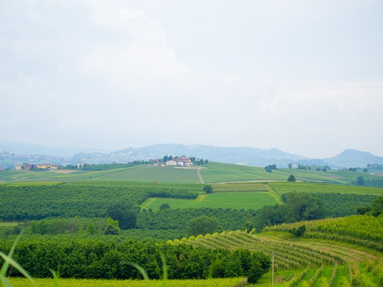 Scarlet & Hues: Views over Piedmont