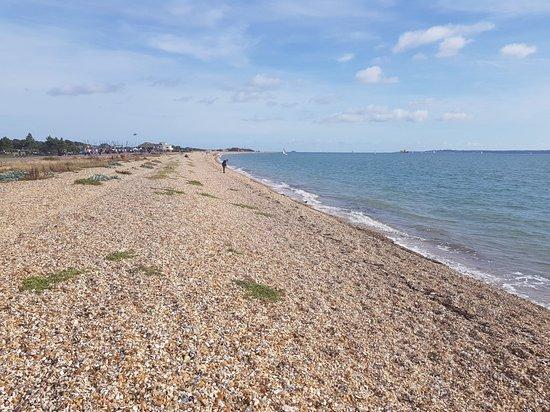 Stokes Bay Beach: 20180915_153359_large.jpg