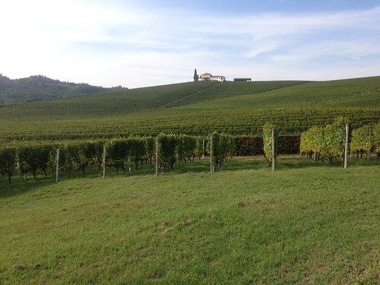 Piobesi d'Alba, Italia: Esterno