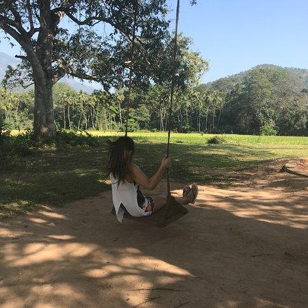 Wellawaya, Sri Lanka: photo6.jpg
