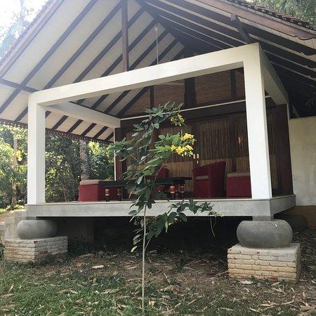 Wellawaya, Sri Lanka: photo8.jpg
