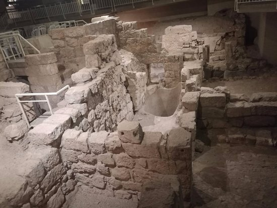 Wohl Museum of Archaeology