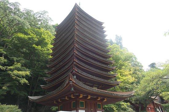 Tanzan Shrine: 木造建築で世界最古と言われる鮮やかな十三重塔。大迫力!!